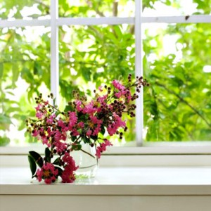 windows-cornwall-newquay